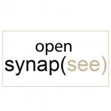 26/01/2014 - RISULTATI BANDO DI SELEZIONE OPENSYNAPSEE!!!