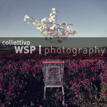 19/01/2013 - TERRA NOSTRA in mostra da WSP a Roma